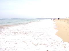 Oleaje en el puntal(Santander) (doloreslopez2) Tags: otoo espuma oleaje mar
