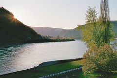 The Rhine valley near St.Goarshausen (hansottoschttle) Tags: flus sonne tal film leica m