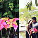 Plantation Bay Resort Cebu E-Session - Ice and Aman