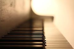 on key (seddeg ~) Tags: old music keys piano 1920 babygrand handbuilt sohmerco img12862r1 debbiespiano hugosohmer icantcarryatuneinabucket 55mmfornat