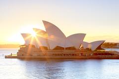 Sydney Opera House Sunrise (stevoarnold) Tags: city sunrise warm sydney australia circularquay nsw newsouthwales sydneyoperahouse goldenlight