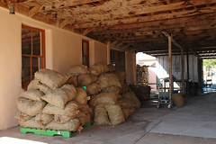 Sacks, lots of sacks. (desert11sailor) Tags: chile newmexico hatch greenchile hatchnm chileroast