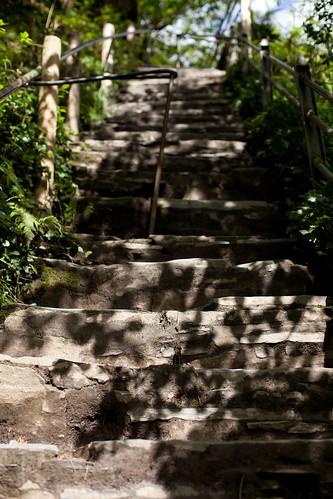 Steps. lots of.
