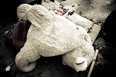 Teddy's Dead III (Surreal-Journey) Tags: ted toys teddy teddybear stuffedanimal adolescence urbanna islandofmisfittoys discardedtoys