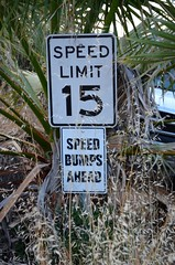 Drive Slow!