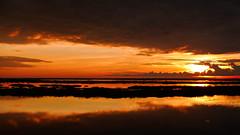 Sunset in 'Llanos del Orinoco' (David Ruiz Luna) Tags: sunset southamerica landscape venezuela mfcc americadelsur flickrdiamond fabuleuse thebestofday gününeniyisi hatoelcedral blinkagain bestofblinkwinners blinksuperstars bestofsuperstars llanosdelorinoco