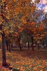 Bright autumn days (Gena Golovskoy) Tags: park russia moscow centrum bulvar chistoprudny galleryoffantasticshots