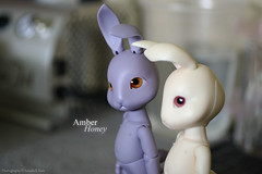 finally together (Amber-Honey) Tags: ball asian beige doll lavender bjd abjd rooney jointed pipos jrpi