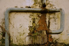 spring pipe (aldous_) Tags: urban chattanooga stain decay pipes pipe drain drip waterpipe surban t2010