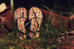 270/365 (TanushreeAg contd.) Tags: texture grass garden pattern sandals bricks slippers chappal