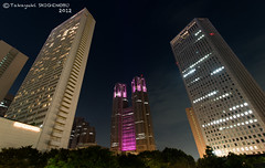 The Tokyo Metropolitan Government Office Building (Flickr collection by Getty images) (Yuripere) Tags: city japan horizontal skyline architecture modern night skyscraper outdoors photography citylife nopeople illuminated   development 2012 treesky      tokyoprefecture capitalcities traveldestinations     buildingexterior lowangleview colourimage      traditionallyjapanese    2012