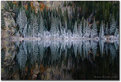 The Frost (Robin-Wilson) Tags: autumn reflection colorado frost calm legacy rockymountainnationalpark bearlake greatphotographers nikond200 cplfilter ostrellina greaterphotographers tpscolorado beforetheduckwokeup sentbackmyd800e f9iso1002sec65mm