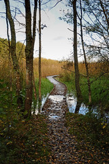 2012 10 05_d700_0158 (swedgatch (Missing my Father)) Tags: autumn reflection art fall nature beautiful beauty by photography mirror photo nikon photographer view angle artistic photos sweden perspective photographs photograph nikkor f4 24120mm d700 swedgatch