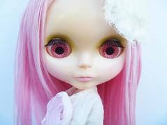 Alena-Rose Spam