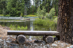 Log Bench on Cle Elum River (Don Thoreby) Tags: forest canyon cascades washingtonstate slopes cascademountains cascaderange aspentrees ponderosapine cleelumriver suncadiaresort cleelumrivervalley