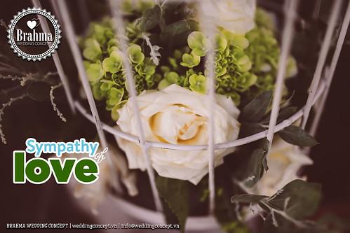 Braham-Wedding-Concept-Portfolio-Sympathy-Of-Love-1920x1280-49