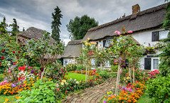 ''An Unusual English Cottage'' (marcbryans) Tags: heathrow longford airport airfield thatched cottages garden flowers path pretty architecture landscape nikond7100 tokina1116mm wideangle village