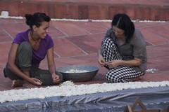 joy_at_work_5763 (Manohar_Auroville) Tags: sri aurobindo birthday auroville matrimandir urn amphitheatre decorations flowers beauty beauties girls manohar luigi fedele 15816