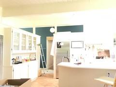 (Dana L. Brown) Tags: newburg green benjamin moore flat firstcoat colour wall
