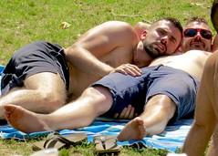 IMG_6913 (danimaniacs) Tags: party griffithpark hot sexy man guy shirtless hunk beard scruff