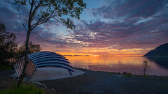 Midnight sun in Nupen, (Reidar Trekkvold) Tags: xt10 xf1024ois kvæfjord landscape natur nature nordnorge norway sea seascape seaside sjø sol solnedgang sommer summer sun sunset troms nupen abigfave