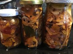 IMG_3909 (Christandl) Tags: pilze schwammerln hausgemacht homemade