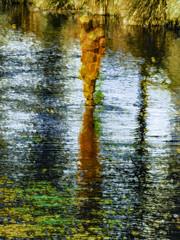 Wet Feet (Steve Taylor (Photography)) Tags: sir antonygormley christchurch avonriver stay art digital sculpture metal rust reflection texture summer