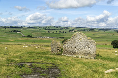 Wardlow Mires (l4ts) Tags: landscape derbyshire peakdistrict whitepeak fieldbarn ruin wardlow wardlowmires drystonewalls farmland