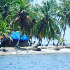 This is life! #flashback #sanblas #island #islandlife #panama #sanblasislands #lovelive #thisislife #lifeisbeautiful (continentchasers1) Tags: island lovelive islandlife sanblas panama lifeisbeautiful flashback sanblasislands thisislife