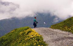 Beyond dreaming ... (*Lie ... on & off ... too busy !) Tags: wengen switzerland zwitserland schweiz suisse jungfrauregion berneroberland alpen mountains montagnes berge paardenbloem dandelions lwenzahn pissenlits wolken nuages clouds nikon nikkor nikond90 nikkor18200mm sehnsucht