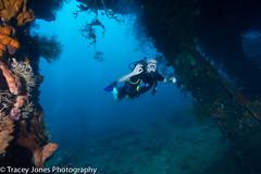 20Tracey Jones Photography160928 (davevanrooijen) Tags: bali divesites indonesia usatliberty cargoroom divers poses underwater wreck
