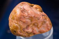 South Dakota Agate (jacobC) Tags: agate southdakota bubblegum