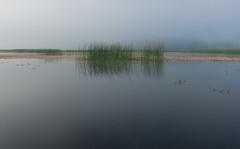 Cerknica Lake (happy.apple) Tags: dolenjejezero cerknica slovenia si cerknikojezero cerknicalake slovenija fog morning landscape jutro megla summer poletje