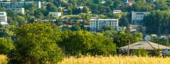Riscani Moldova (Nagorjan) Tags:  moldova nagorjan riscani tvv