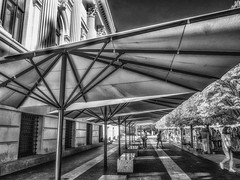 Under the Parasols (Mildred Alpern) Tags: infrared blackandwhite parasols canvas benches passerby