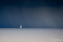 dany-durwael-de-5286 (dany.durwael) Tags: sturm dierauesee meer regen wolken segelboot horizont