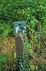 Garth Brooks: No Fences Me: Happy Fenced Friday! (FrauN.ausD.) Tags: happyfencedfriday cd fence outdoor grn zaun garth brooks pflanze