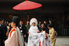 Shinto Wedding (elenaleong) Tags: japanesetraditionalwedding meijijingu 明治神宮 weddingprocession shrinemaidens priests shintoweddingceremony japanesebride japanesebridegroom attire shintoattire whitekimono blackkimono japanstreetcapture elenaleong 神前結婚