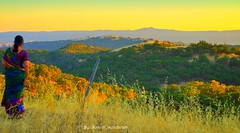 Panoramic View From A Perfect View Point... (Sunciti _ Sundaram's Images + Messages) Tags: california sunset hamilton sanjose observatory viewpoint anawesomeshot aplusphoto agradephoto abovealltherest