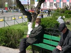 Man Watching Dancers (upyernoz) Tags: people kazakhstan taraz    dostyksquare victorydayrehearsal