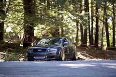 Bagged and Boosted Audi (BrendanBannister) Tags: gold wheels just modular vip a4 audi lowered built s4 fully slammed stance dumped 24k bagged fitted hellaflush stanceworks canibeat stancenation
