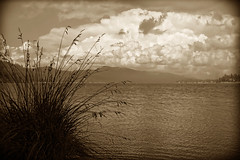 Island Time (Tattered Photography) Tags: trees mountain lake mountains water sepia clouds reflections point boats woods rocks squid cannon thunder bigbearlake edstroman pickupyourdamntrash tatteredphotography chinaisland