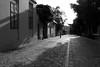Pecs, Hungary (j-riviere) Tags: street leica city pecs zeiss europe hungary stones cobble m8