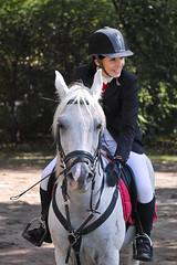 SDIM8760 (Artur Malinowski) Tags: horse caballo cavallo pferd konie paard azienkikrlewskie    sigmasd15 royalcup2012 hipodrommuzeumazienkikrlewskiewwarszawie helios44m2588bladesam