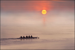 Row, Row, Row Your Boat (adrians_art) Tags: sky people mist weather fog sunrise reflections crew riverthames oars rowingboat sportsmen