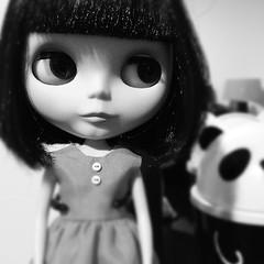 Hello Mr Panda