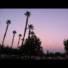 Sunset & Moon in LA