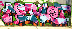 Sacramento weekend (Velvety Violets) Tags: art graffiti video mural paint spray jungle theme cheetah sacramento merlot ff peice fnf ironlak fewandfar