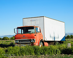 Cabover Chevrolet Box Van (Steve G. Bisig) Tags: chevrolet abandoned truck pacific rusty chevy chev cabover boxvan