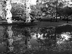 Duyststraat, Rotterdam (Gerard de Boer) Tags: bw 3 reflection fall water rain rotterdam spiegel herfst ricoh kerk regen kunstwerk reflectie moskee grd duyststraat